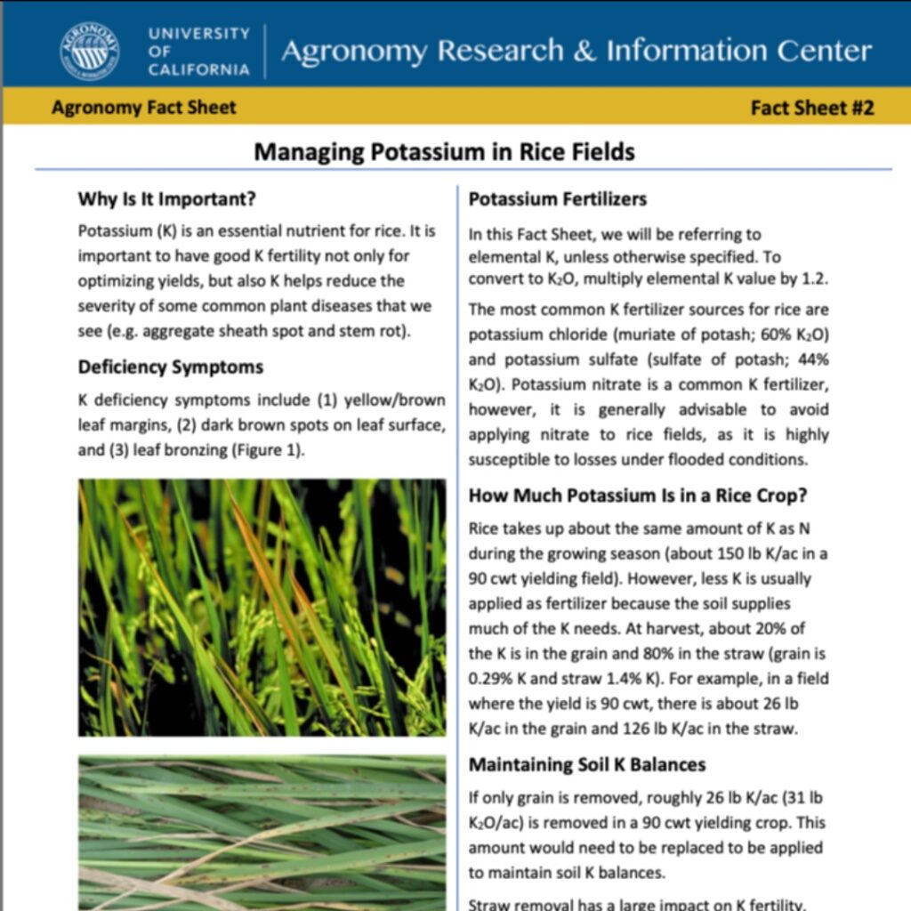 New Rice FactSheets now available